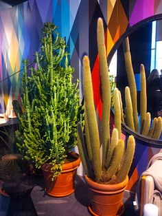 "WB2013. Eigen Huis en Interieur (& More Than Classic) House. Two magazines combined in one house. EH&I is ""modern luxe"" and MTC ""Classique Chique"" (I prefer EH&I). Here: cactuses, larger than life, wow."