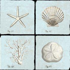 Blue Valerio Shell Coasters ..