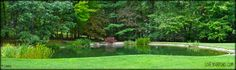 Large scale pond by Full Service Aquatics of Summit, NJ.