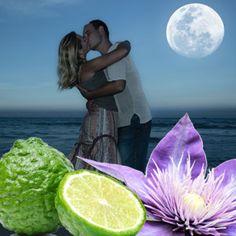 Midnight Romance Fragrance Oil | Natures Garden Fragrance Oils #romanticscent #fragranceoil #midnightromancescent