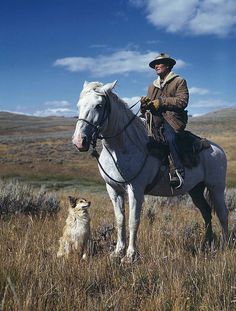 Shepherd with his horse and dog, Montana, August 1942
