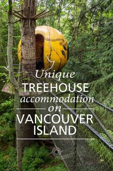 Free Spirit Spheres: Unique Treehouse Accommodation on Vancouver Island Lanai Island, Island Beach, Butler, Montreal, Where Is Bora Bora, Vancouver Travel, Road Trip, Toronto, Viajes