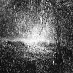 Fan Art of Storm for fans of Rain 17265646 Rain And Thunderstorms, Rain Pictures, I Love Rain, Rain Photography, Rain Storm, Thunder And Lightning, Singing In The Rain, Rain Drops, Rainy Days