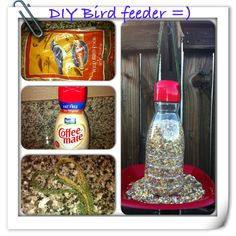 DIY bird feeder from coffee creamer bottle :)