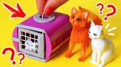 Dolls house miniature cat /& kitten-WHISKAS aliments paquet /& deux livres-fait main