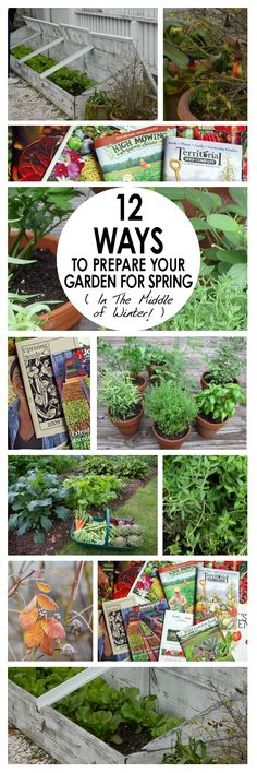 Gardening, Gardening Prep, How to Prepare Your Garden for Summer, Winter Gardening Prep, How to Prepare Your Garden for Winter, Spring Gardening, Winter Gardening Projects, Winter Gardening Tips, Winter Gardening 101, Popular