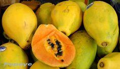 La papaye est le fruit du papayer
