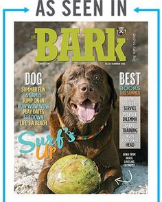 The Bark is the first dog magazine to tap into the exploding phenomena of dog culture and lifestyle. Summer 2016, Summer Fun, Dog Love, Love Him, Dog Books, Summer Games, Bow Wow, Surfs, Surf