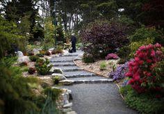 Japanese Tea Garden, Esquimalt Gorge Park, Victoria, BC (by Chad Hipolito for The Globe & Mail)