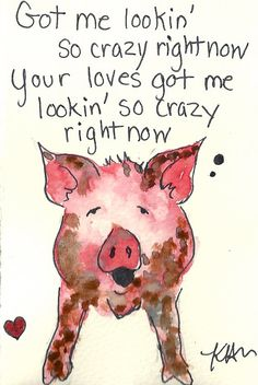 pop singing pig valentine - Valentine Pig