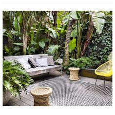 Tropical garden courtyard