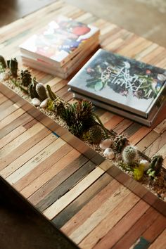 Table top and succulent idea. <3