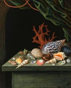 After Antoine Berjon Still Life with Shells and Coral 1900