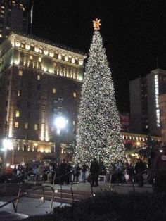 MY FAVORITE. The St. Francis Hotel in San Francisco overlooking Union Square at Christmas time.
