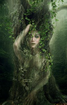 "Nature:  ""The #Entwives,"" by Celtica-Harmony, at deviantART."