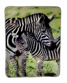 Zebras decorative hi pile throw blanket