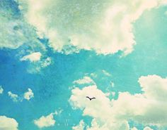FLY 11x14 Photography Graphic Design Mixed Media ART Print Poster Blue Teal Skies Sky Bird Flying Vintage Textured WallArt