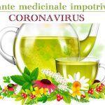 Coronavirus - cum se transmite, ce analize se fac, cum se trateaza | La Taifas White Wine, Wine Glass, Alcoholic Drinks, Flora, Avocado, Healthy, Tableware, Sciatica, Knives