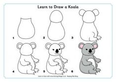 How to draw koalas learn to draw a koala draw animals for kids toddler drawing drawing . Easy Drawings For Kids, Drawing For Kids, Art For Kids, Drawing Drawing, Cute Animal Drawings, Cartoon Drawings, Draw Animals For Kids, Toddler Drawing, Animal Templates