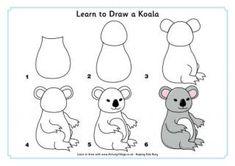 Apprendre à dessiner un Koala