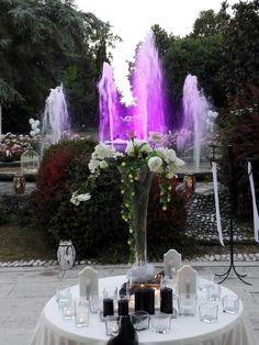 Fontana magistra