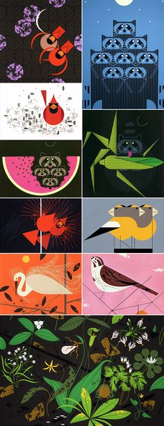 Somehow I have only just discovered Charley Harper and now I'm a bit obsessed.