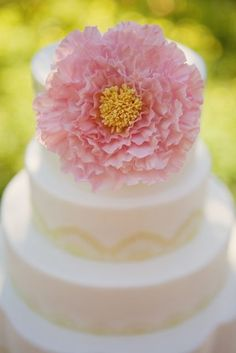 gorgeous cake by @mysweetandsaucy