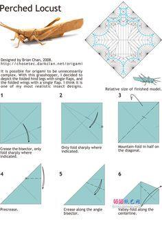 BrianChan折纸蝗虫手工DIY教程图解详细步骤1