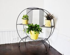 My grandma had one of these at our cabin and I damn 8 year old me for not realizing what it was when I had the chance. NERDS!!!!!   MidCentury Plant Stand. by thewhitepepper on Etsy