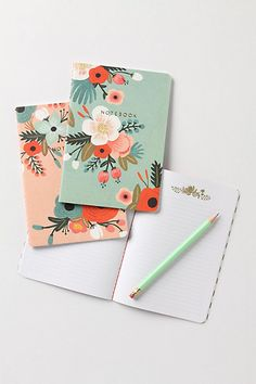 Notebooks by Rifle Paper Co. - Love Rifle's designs and especially these colors!