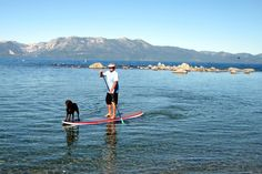 Paddle Board with your dog! Oh We love you Tahoe! #SUP