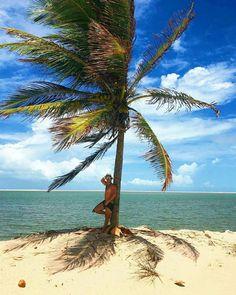 375c77097f43 Lençois Maranhenses, Paisagem Natural, Viagem, Praia, Paisagens, Turismo