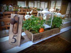 Pallet Wood Wedding Centerpiece, Khmaira Farm 1001 Pallets, Wood Pallets, Pallet Wood, Recycled Pallets, Pallet Art, Pallet Crafts, Diy Pallet Projects, Pallet Ideas, Wood Projects