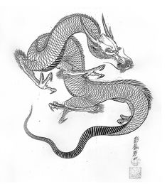 Jack Mosher:100 dragons | VK Japan Tattoo Design, Paradise Tattoo, Dragon Sketch, Japanese Dragon Tattoos, Oriental Tattoo, Dragon Tattoo Designs, Skin Art, Learn To Draw, Line Drawing