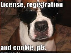 License, registration and cookie .....