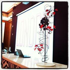Modern simplistic but still luxurious display with nearly black Vanda orchids Vanda Orchids, Skates, Bespoke, Display, Luxury, Modern, Flowers, Black, Home Decor