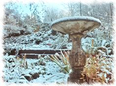 BLOG POST: What Are Your Winter Solstice Traditions? With traditions in the comments. Some lovely ideas.