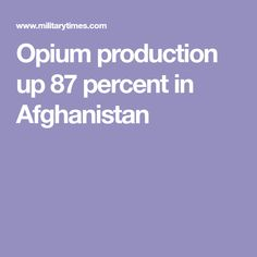 Opium production up 87 percent in Afghanistan
