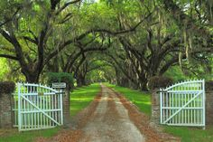 the desired Southern drive to have...