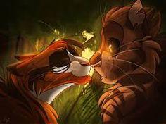 Image result for tigerstar and firestar