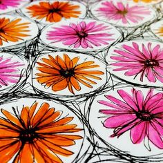daisies in circles