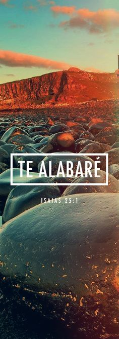 Te alabare. Isaias. 25:1