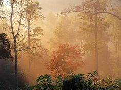Sunrise in Murphy, NC
