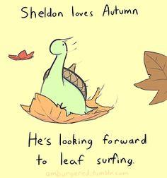 Sheldon's adventures are cute!