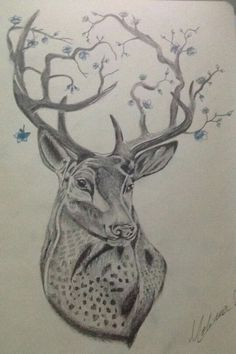 Deer art, disegno cervo