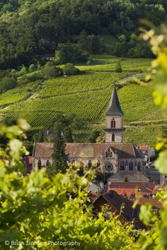 Presbytere Catholique Church, Ribeauville,  Alsace France. © Brian Jannsen Photography  ~~ Shared for your consideration and review.