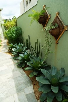 70 magical side yard and backyard gravel garden design ideas 27 Related Side Yard Landscaping, Landscaping Ideas, Florida Landscaping, Privacy Landscaping, Succulent Landscaping, Planting Succulents, Garden Spaces, Tropical Garden, Small Gardens
