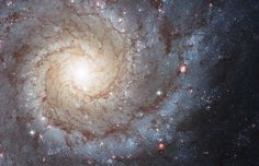 M74: The Perfect Spiral. If not perfect, then this spiral galaxy is at least one of the most photogenic. An island universe of about 100 billion stars, 32 million light-years away toward the constellation Pisces, M74 presents a gorgeous face-on view