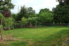 Big Fenced Yard
