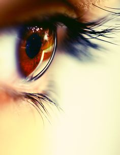 Eye Photography, Photoshop Photography, Creative Photography, Pretty Eyes, Cool Eyes, Brown Eyes Aesthetic, Butterfly Eyes, King Horse, Oh Beautiful